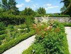 Der Kräutergarten der Burg Pappenheim